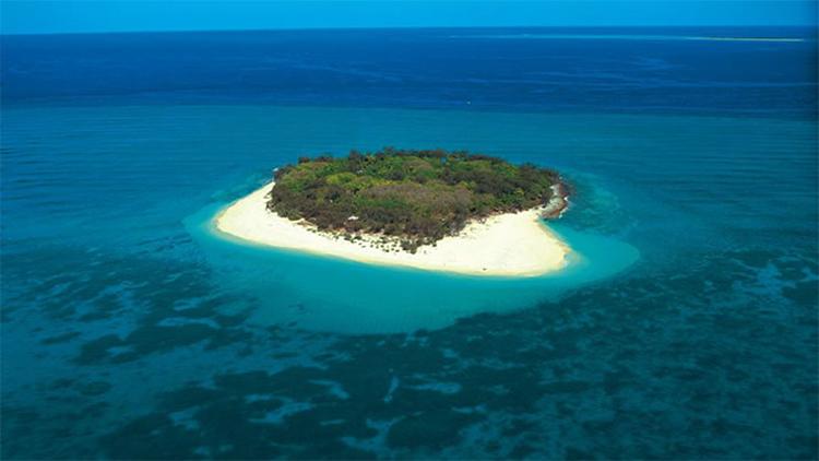 Wilson eiland