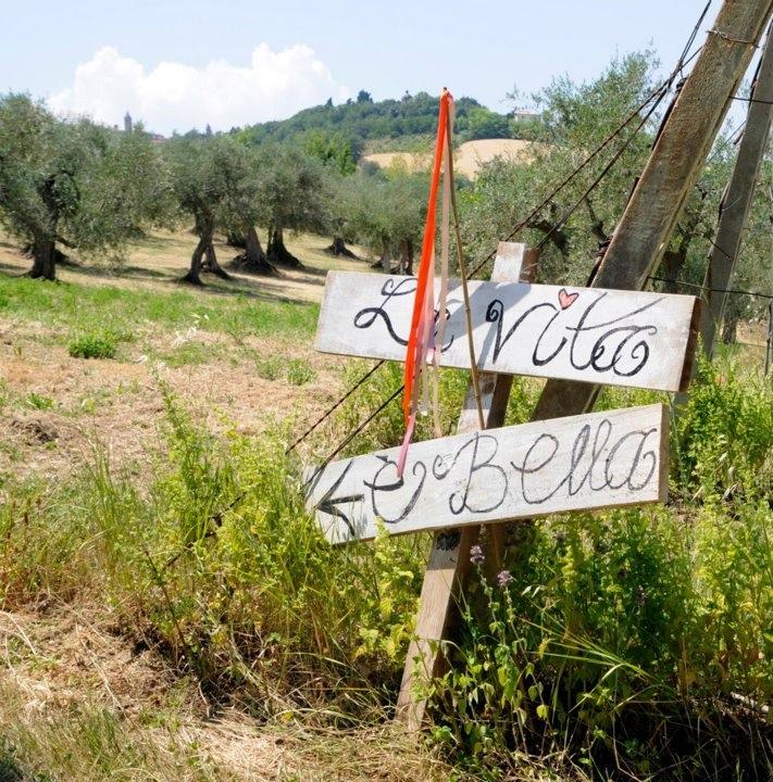 Vintage bruiloft in de olijfgaarden van Italië